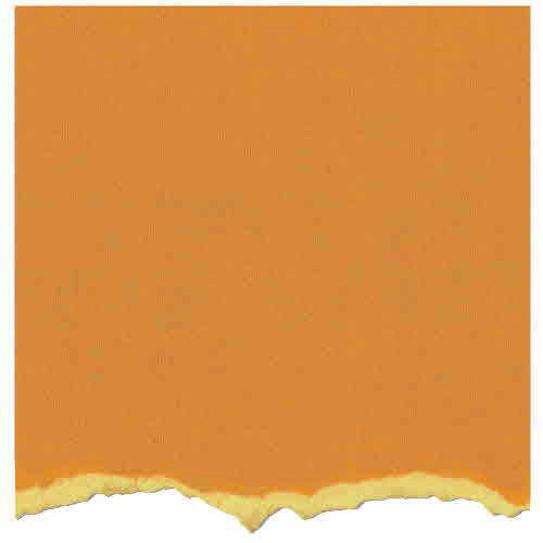Adirondack 12x12 - ColorCore Cardstock - Butterscotch - Tim Holtz - Core'dinations