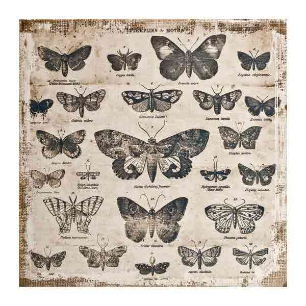 District Market -  Burlap Panels - Butterflies - Tim Holtz - Advantus