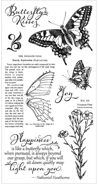 Nature Sketchbook Cling Stamps 1 - Hampton Art - Graphic 45