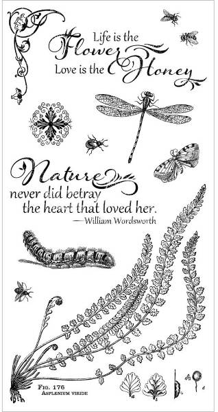 Nature Sketchbook Cling Stamps 2 - Hampton Art - Graphic 45