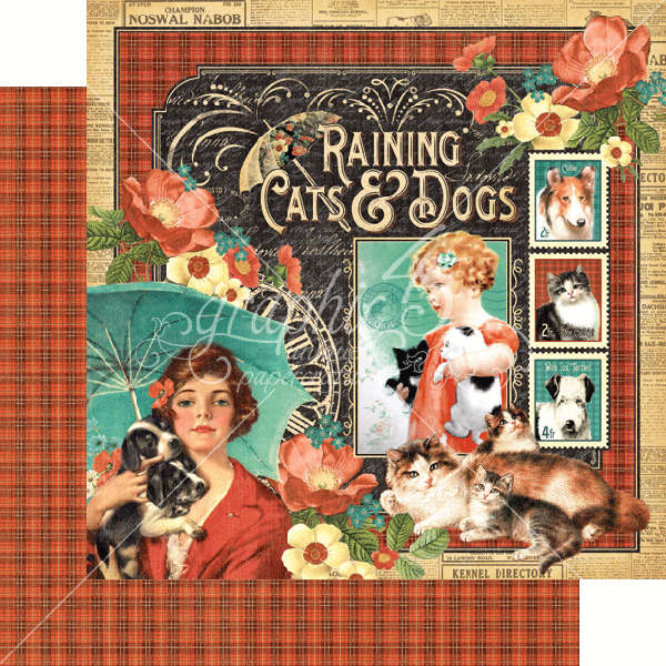 Raining Cats and Dogs -  Raining Cats & Dogs - 12 x 12 Double-sided Paper - Graphic 45