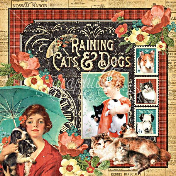 Raining Cats and Dogs -  Raining Cats & Dogs - 12 x 12 Double-sided Paper - Graphic 45-1