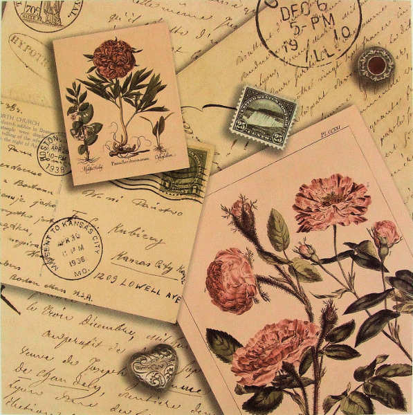 Life's Journey -  Flowers & Letters - 12x12 paper - K&Company