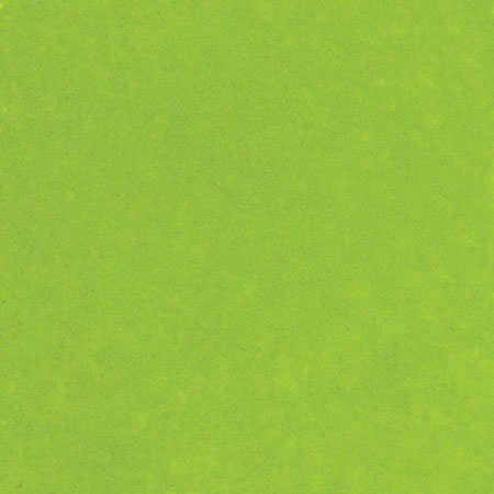 Embossing Powder - Lime Green - Ranger